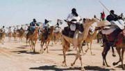 mover_algeria