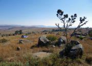 move_swaziland
